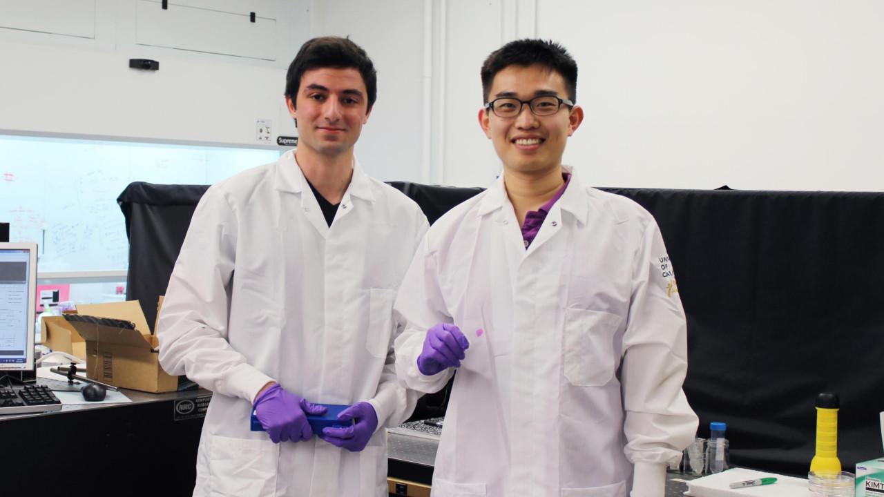 Wide-field Computational Imaging of Pathology Slides using Lensfree On-Chip Microscopy